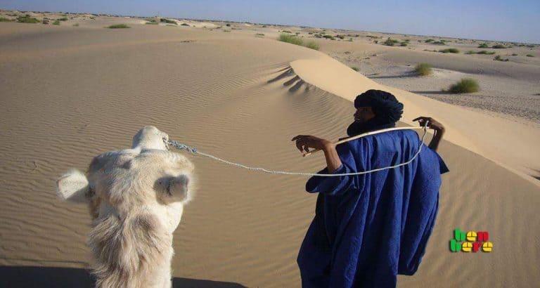 taoudeni mine risques homme chameau sable desert Tombouctou Mali