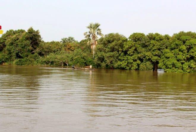 À Tombouctou, la montée des eaux inquiète les agriculteurs