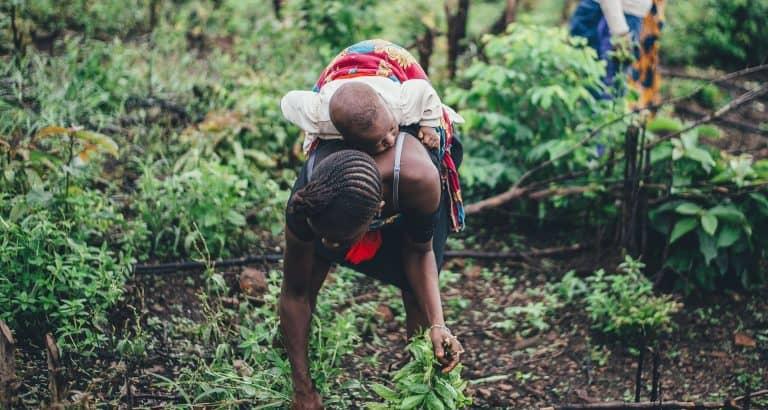 amazones-zones-rurales femme-rurale