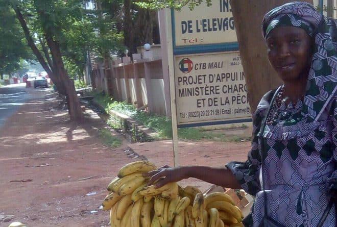 Une journée avec Biba, vendeuse de fruits et femme battante
