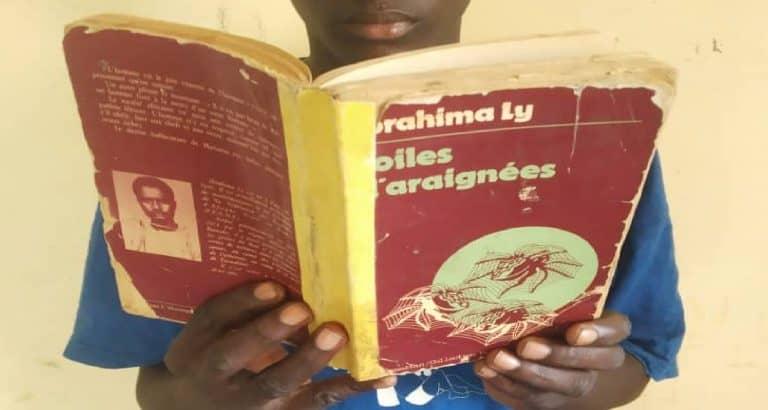 Livre : pourquoi lire « Toiles d'araignées » d'Ibrahima Ly