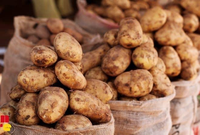Sikasso : 2e région productrice de denrées mais leader en malnutrition