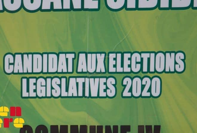 Législatives 2020 : entre insécurité, émergence des jeunes et candidat insolite