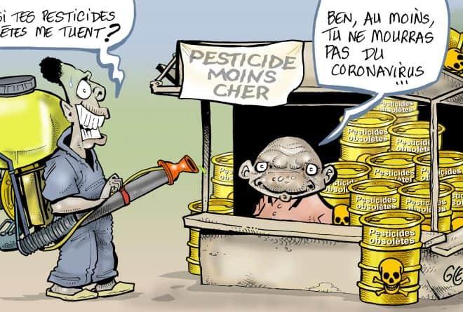 #StopPesticidesObsolètes : au Mali, n'est pas vendeur de pesticides qui veut
