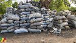 Koulikoro : exploitation et précarité, double peine pour des charbonnières de Bélédougou