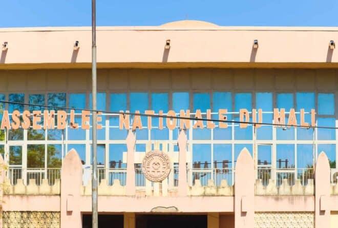 Mali : à l'Assemblée nationale, les députés doivent faire plus que « contrôler l'action gouvernementale »