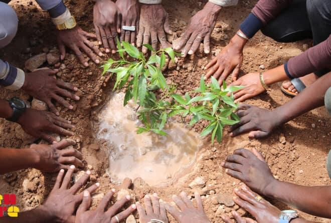 Mali : en attendant que les champs refleurissent d'espérance…