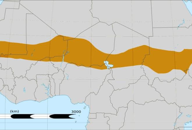Au Sahel, la question des otages en débat