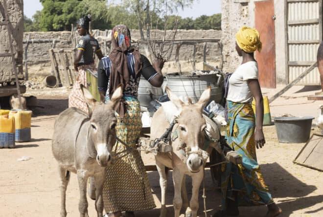 A la Une : le village de Bounti endeuillé dans le centre du Mali
