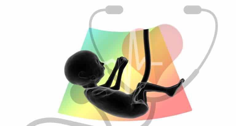 Covid-19 : l'inquiétante baisse des consultations prénatales
