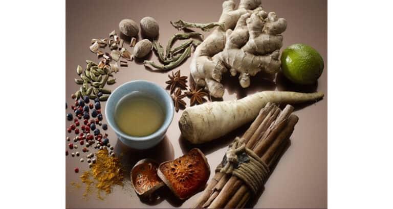 Santé de la reproduction : l'important rôle de la médecine traditionnelle